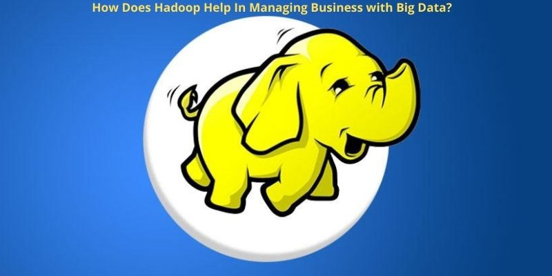 How Does Hadoop Help In Managing Business with Big Data?